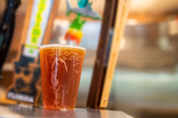 SeaWorld Orlando offers guests free beer