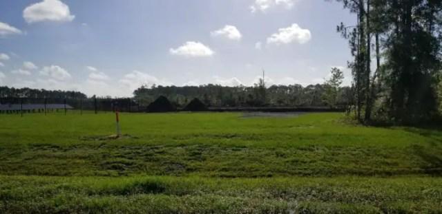Work Underway on New Solar Farm Near Animal Kingdom at Walt Disney World 2