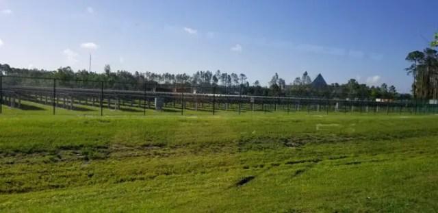 Work Underway on New Solar Farm Near Animal Kingdom at Walt Disney World 4