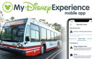 Redesigned My Disney Experience App Launches with New Features Including Bus Wait Times