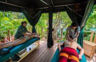 Discovery Cove Orlando Announces Two New Exclusive Experiences