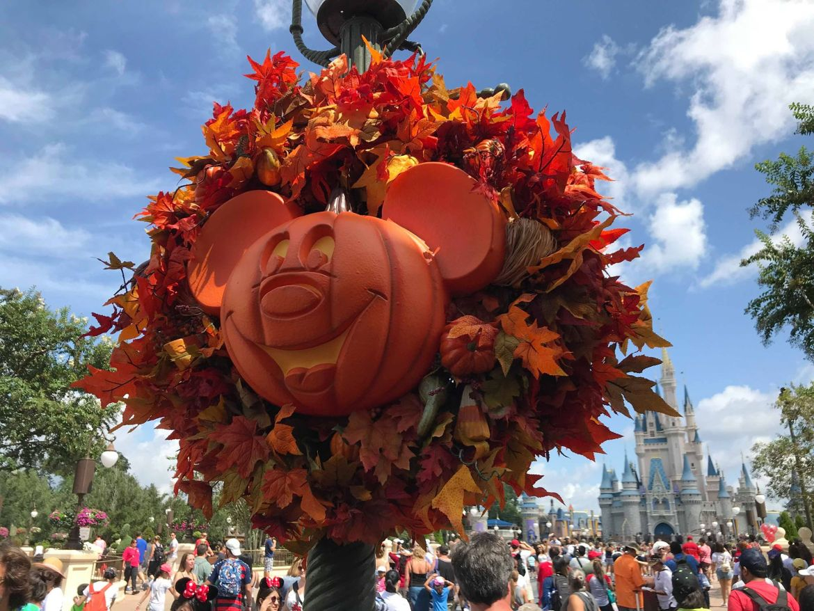 Halloween Decorations Have Started To Go Up At Magic Kingdom!