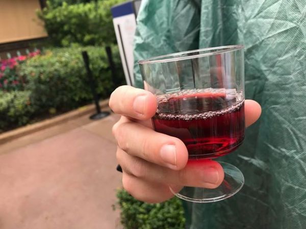It's All About The Drinks At Epcot's International Food And Wine Festival 36
