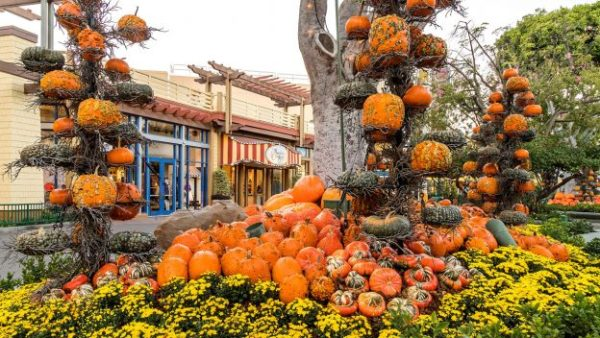 Fall-Time Treats and Fun Have Arrived at Downtown Disney in Disneyland Resort! 1