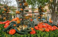Fall-Time Treats and Fun Have Arrived at Downtown Disney in Disneyland Resort!