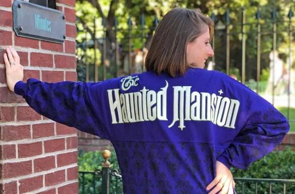 Disney Attractions Spirit Jerseys