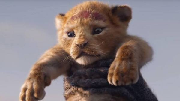 Live-Action Lion King Trailer Breaks Disney Viewing Record Leaving Fans Wanting More