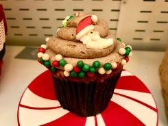 Saratoga Springs Christmas Treat Spectacular