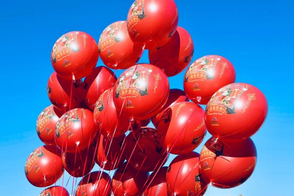 Celebrate the Year of the Pig at Disneyland Resort's Lunar New Year Celebration 2