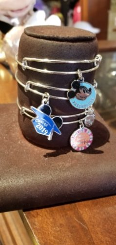 Disney Annual Passholder Bangle From Alex and Ani 2