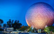 Rabies alert issued for the Epcot Area of Walt Disney World