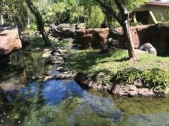otter shade