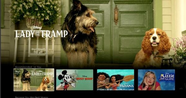 Live Action 'Lady and the Tramp' Set to Release on Disney+