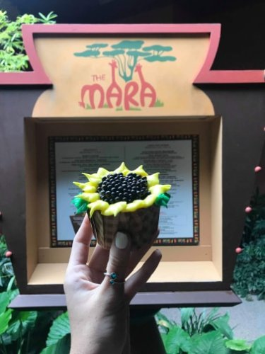 African Sunshine Cupcake Now Available at Disney's Animal Kingdom Lodge