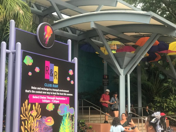 Light Up Your Summer With Electric Ocean at SeaWorld Orlando 4