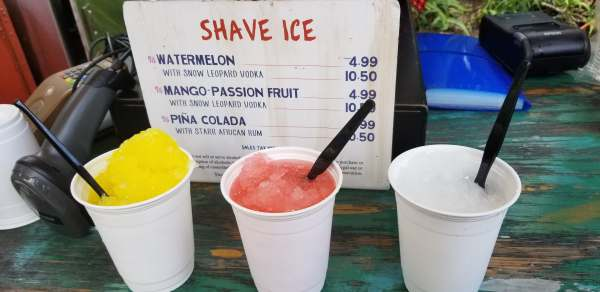 Cool Down with Shaved Ice from Disney's Animal Kingdom 2