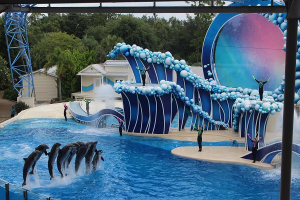 Light Up Your Summer With Electric Ocean at SeaWorld Orlando 7