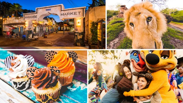 New Lion King Themed Dining Adventure, Circle of Flavors: Harambe at Night Coming To Animal Kingdom 1