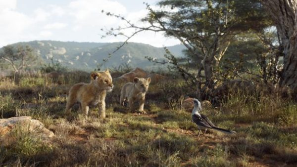The Lion King Stars Grand Marshal Magic Kingdom