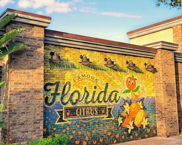 New Orange Bird Wall Spotted at Disney Springs