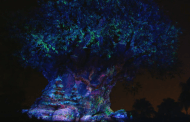 Sneak Peek at the Tree of Life Holiday Awakenings at Disney's Animal Kingdom