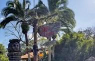 Jingle Cruise Returns to the Magic Kingdom this weekend