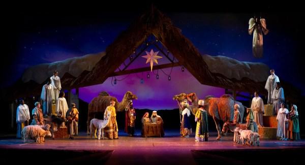 Celebrate the Holidays at SeaWorld Orlando's Christmas Celebration 6