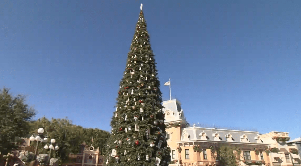 Video: Decorating Disneyland for the Holidays