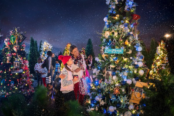 What is missing from Christmas at Walt Disney World for 2020 5