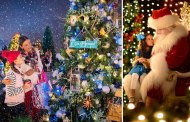 It's Officially Christmas at Disney Springs!