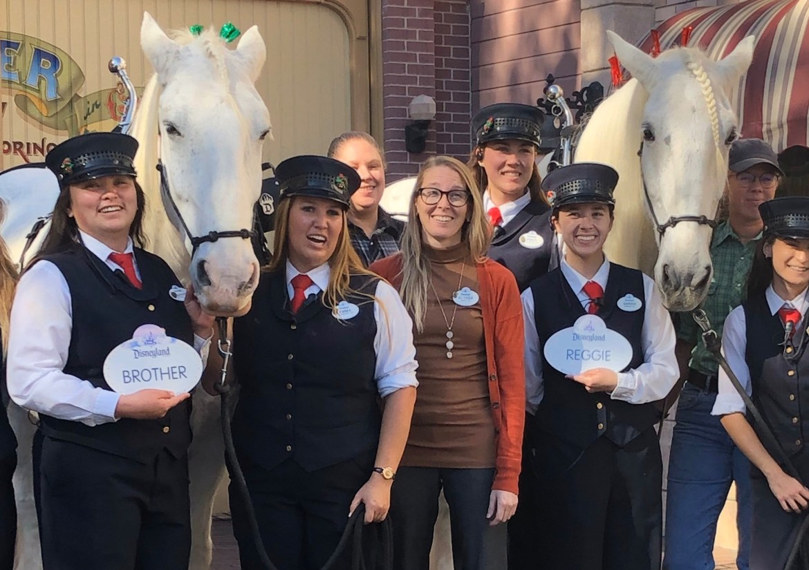 Two of Disneyland's Beloved Horses Are Now Retired Cast Members