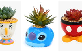 Faux Disney Succulent Planters Add Whimsy Decor To Any Room