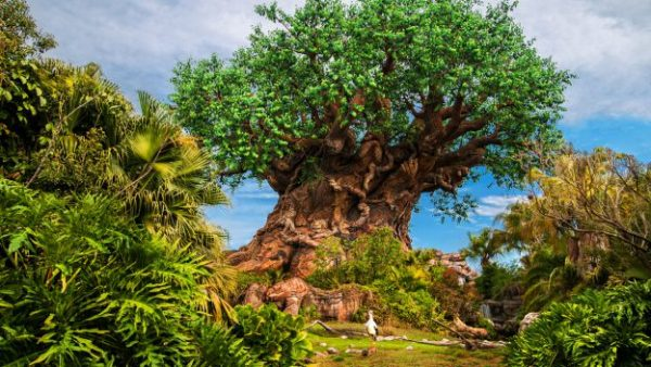 Multi-Day Celebration at Disney's Animal Kingdom for 50th Anniversary of Earth Day