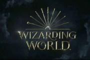 'Harry Potter' Cast Records Audiobooks of