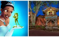 Fans Call For Disney to Re-Imagine Splash Mountain With 'Princess and the Frog' Theme