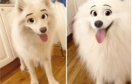 Change Your Pet into a Disney Character with this Snapchat Filter