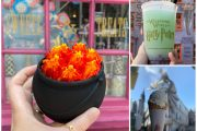 The Ultimate Guide To Dining In Diagon Alley At Universal Studios Florida
