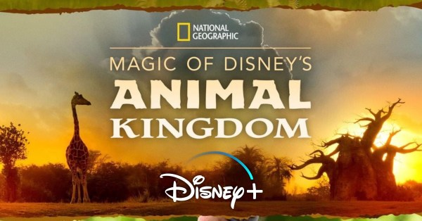 'Magic of Disney's Animal Kingdom' from National Geographic to Premiere on Disney+ This Fall 1