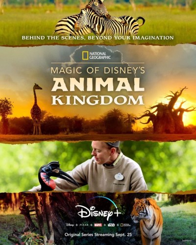'Magic of Disney's Animal Kingdom' from National Geographic to Premiere on Disney+ This Fall 2