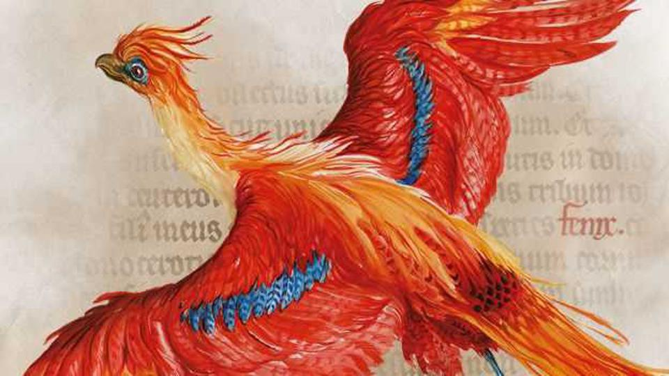 "The British Library's ""Harry Potter: A History Of Magic"" Exhibit Available Online!"