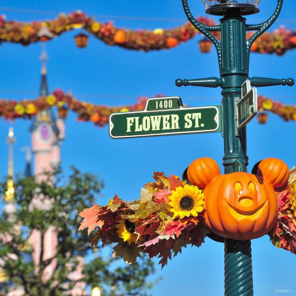 Selfie Spots Return To Disney's Halloween Festival In Disneyland Paris!