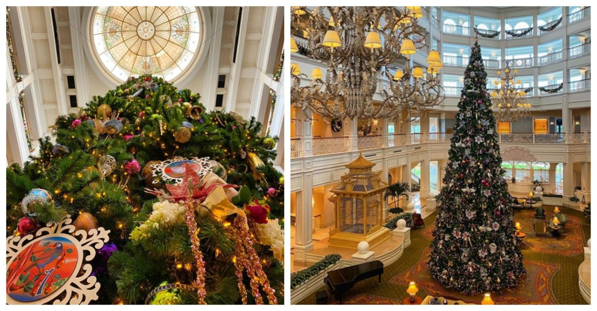 Watch as the Stunning Grand Floridian Christmas Tree goes up