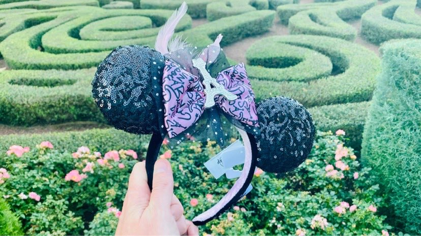 Oh La La, Stunning New France Minnie Ears From Epcot