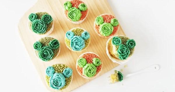 Hidden Mickey succulent cupcakes