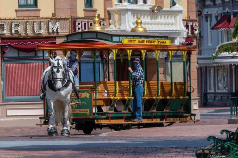 Disneyland horses return to work on Main Street USA in Disneyland