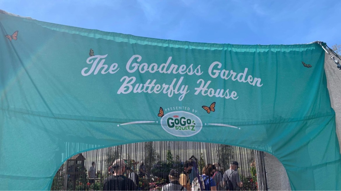 Tour the Butterfly Garden at Epcot's Flower and Garden Festival