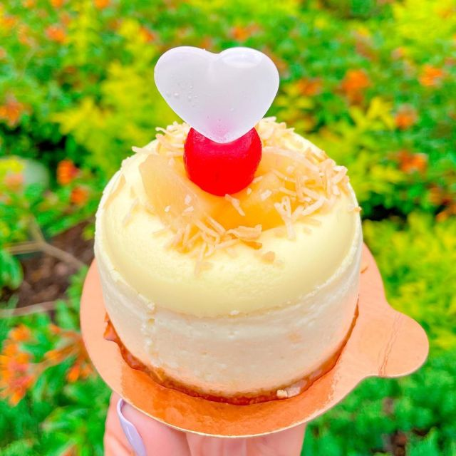 NEW Pina Colada Cheesecake at Amorette's Patisserie 3