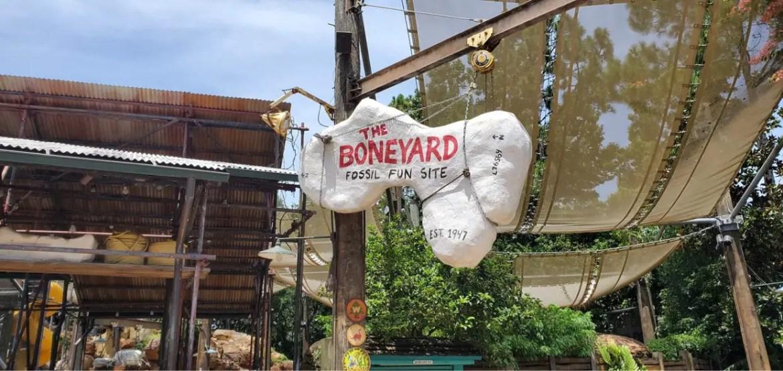 Work to begin on the Boneyard Playground in Dinoland USA