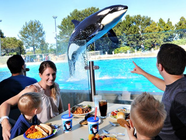 SeaWorld Orlando dinner