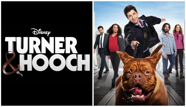 Check Out the Official Trailer for the 'Turner & Hooch' Disney+ Series Starring Josh Peck 1